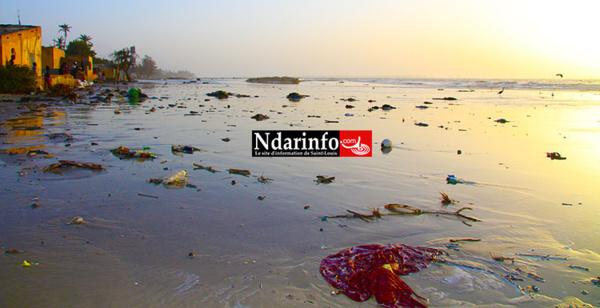 Psychose à Gandiol: la mer en furie chasse les populations de leurs habitations Regardez !