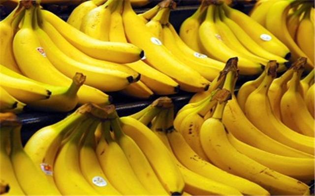 La banane a rapporté 6,5 milliards de FCFA aux producteurs en 2015