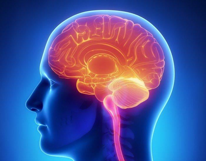 10 choses complètement incroyables sur les capacités folles de notre cerveau !