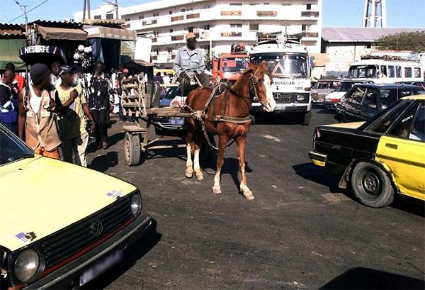 Transport :  Vers la réglementation de la circulation des charrettes, pousse-pousse et autres tricycles