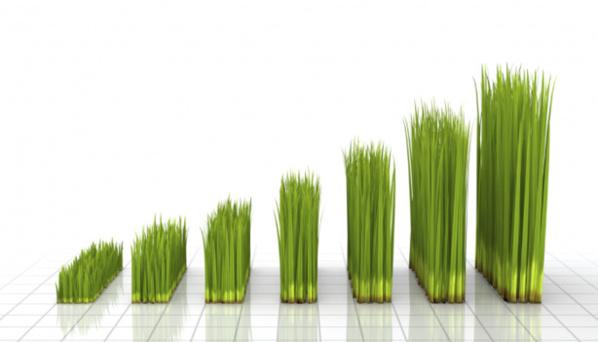 Croissance verte : Le potentiel africain inestimable
