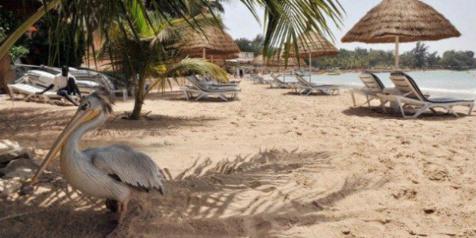 Menaces terroristes : La sécurité renforcée sur les sites balnéaires du Sénégal