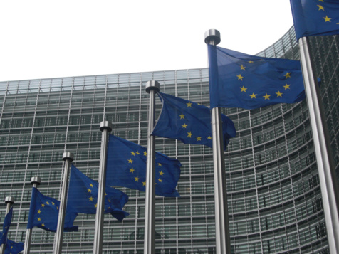 Scrutin référendaire : L'Ue se réjouit de l'attachement profond des électeurs aux principes démocratiques