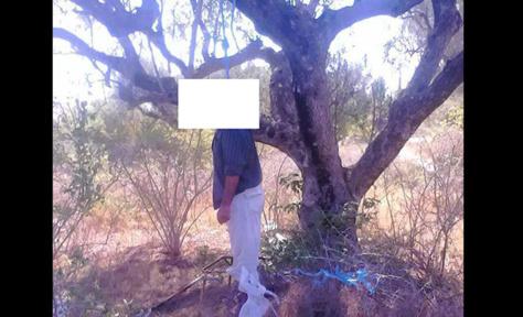 Découverte macabre à la forêt classée de Mbao: Un homme trouvé mort pendu à un arbre