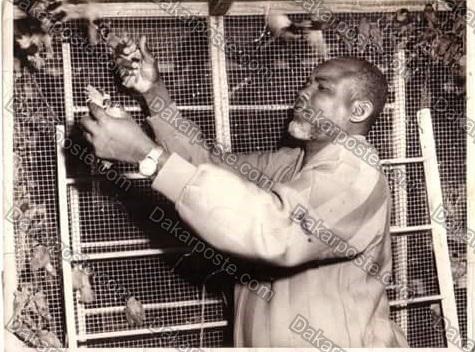 Voici le milliardaire El Hadji Diallo Picc