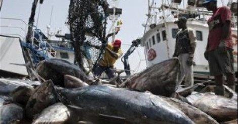 """""""La pêche illicite non déclarée et non réglementée nous fait perdre 150 milliards par an"""", selon Oumar Guèye"""