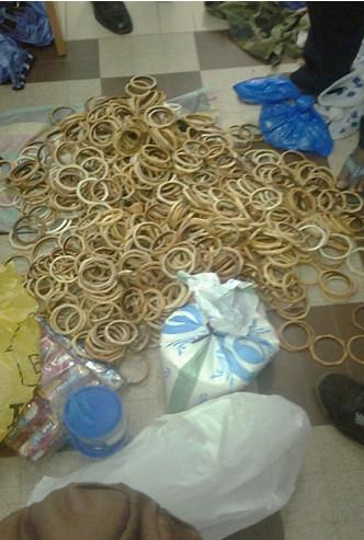 Lutte contre la criminalité faunique : Une saisie de 1081 pièces d'ivoire, de trophées de lion et de carapaces de tortues vertes effectuée à Ziguinchor