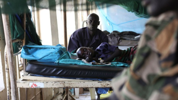 Traitement Antipaludéen : Novartis se ligue avec Medicines for Malaria Venture