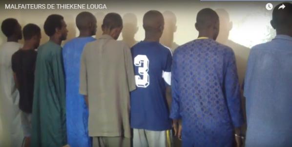 Banditisme à Louga : 11 personnes interpellées dont trois femmes, deux fugitifs recherchés