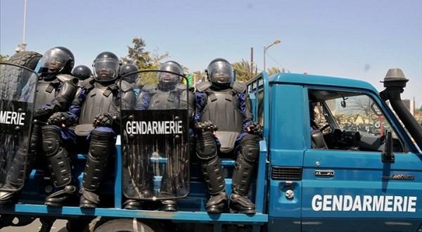 Lutte contre le trafic de drogue : La gendarmerie dévoile son arsenal de guerre