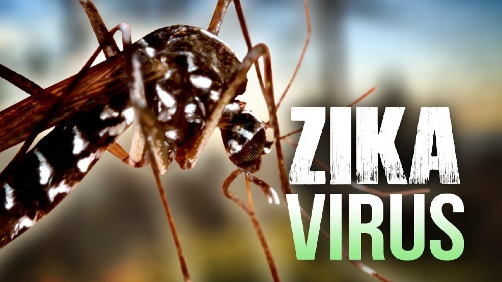 Eva Marie Coll Seck sur le virus Zika : « Il faut que nous soyons prêts car ces maladies sont présentes dans les pays voisins »