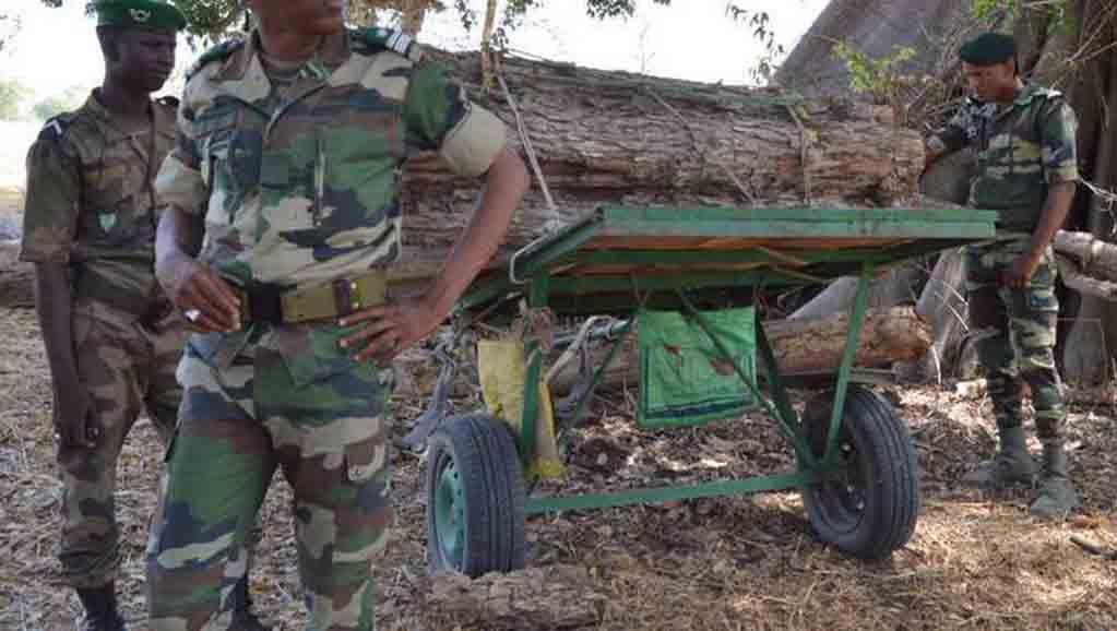 """Abdoulaye Baldé sur l'arrestation des 3 agents des Eaux et Forêts arrêtés en Gambie : """"Nous traquerons les délinquants n'importe où ils seront"""""""