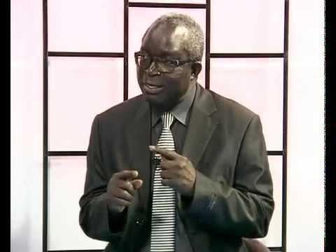 Babacar justin Ndiaye, Politologue