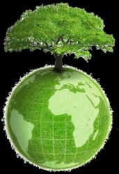 Ce 15 novembre, célébration de deux journées, la journée mondiale des écrivains en prison et la journée mondiale du recyclage
