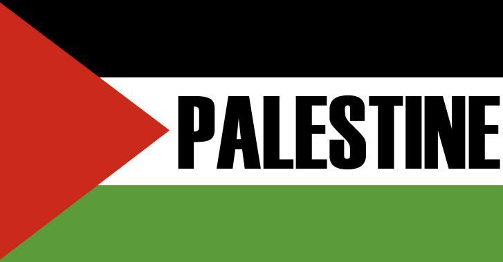 Ce 29 novembre : Journée Internationale de solidarité avec le peuple palestinien