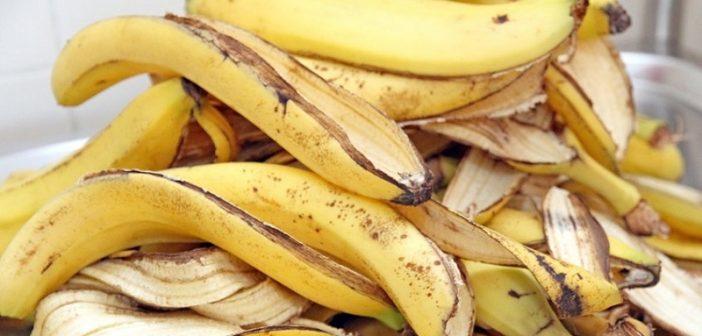 Santé: Découvrez quelques bienfaits des peaux de banane