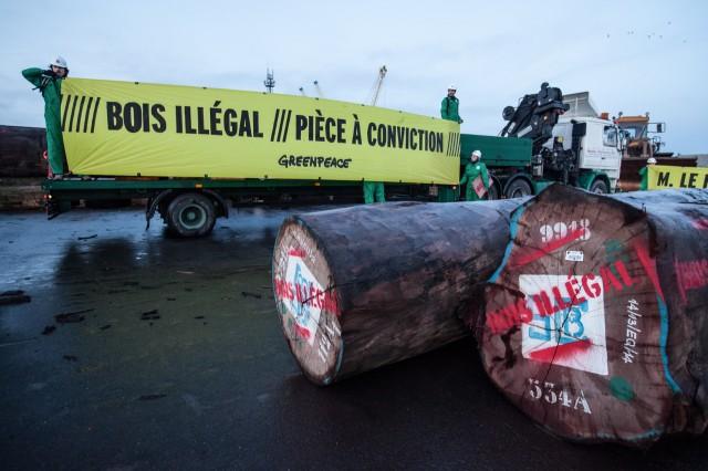Le Sénégal et la Gambie en guerre contre le trafic de bois