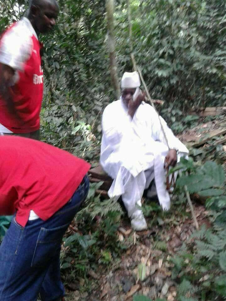 """Résultat de recherche d'images pour """"yahya jammeh dans une ferme en guinée equatoriale"""""""