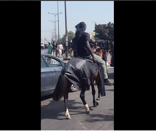 photos   un cheval et son cavalier  u00e0 la manifestation de y u0026 39 en  u00e0 marre