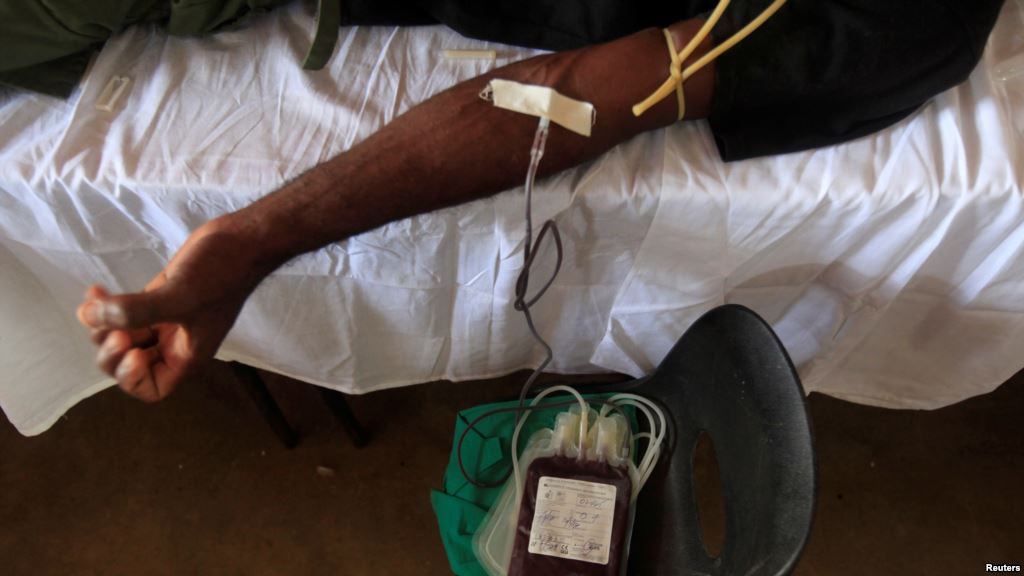 Matam : le manque de sang cause de 8 décès sur 10 en couches (Sage-femme)
