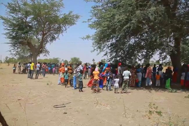 Affrontements entre populations et forces de l'ordre à Diockoul : 3 véhicules de la Mairie saccagés, des coups de feu tirés