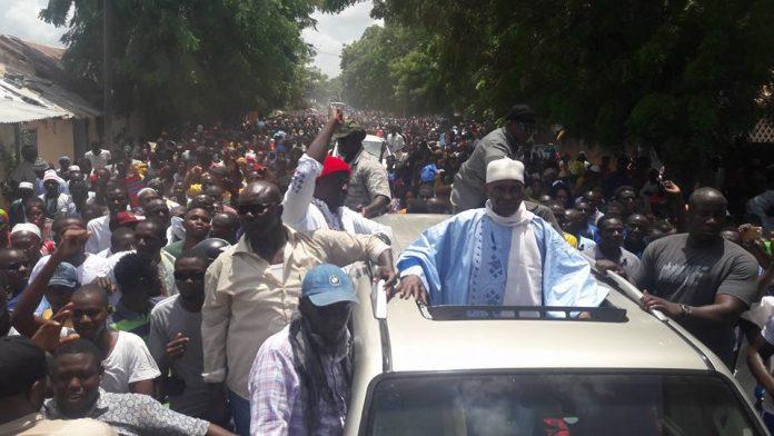 Me Wade, provocateur matois : «je suis outré de revoir Kolda comme je l'avais laissé ; le Sénégal ne s'arrête pas à Diamniadio»