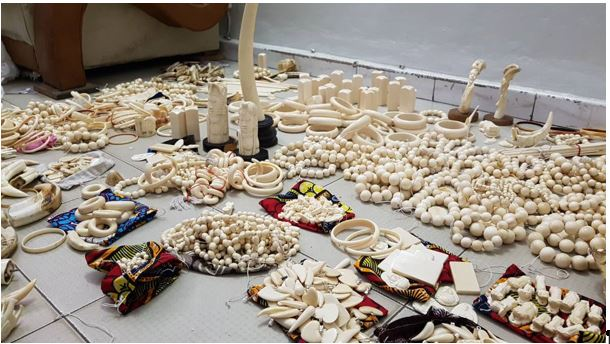 Criminalité faunique : Saisie de 780 pièces d'Ivoire d'éléphant au marché artisanal de Soumbedioune