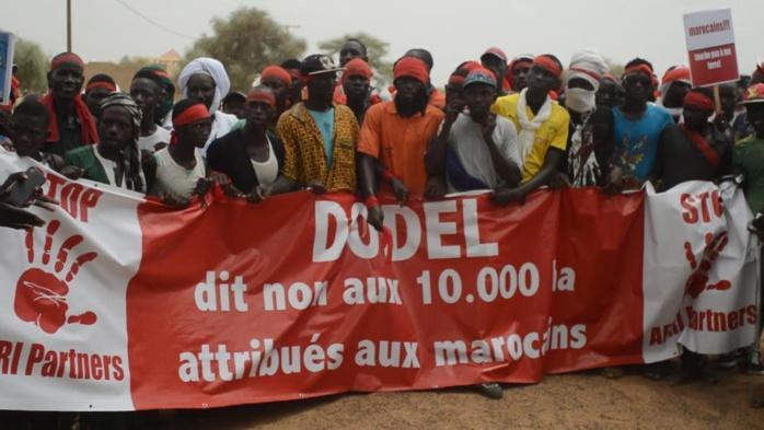 Foncier : Un Collectif de Dodèl saisit la Cour suprême contre des Marocains
