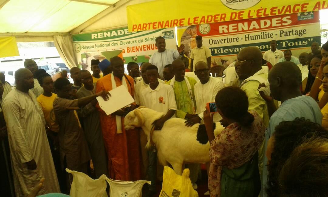 Cérémonie de remise de géniteurs Ladoum aux éleveurs de Diourbel,  Bambey et Gueoul par le Réseau National des Eleveurs du Sénégal (RENADES)