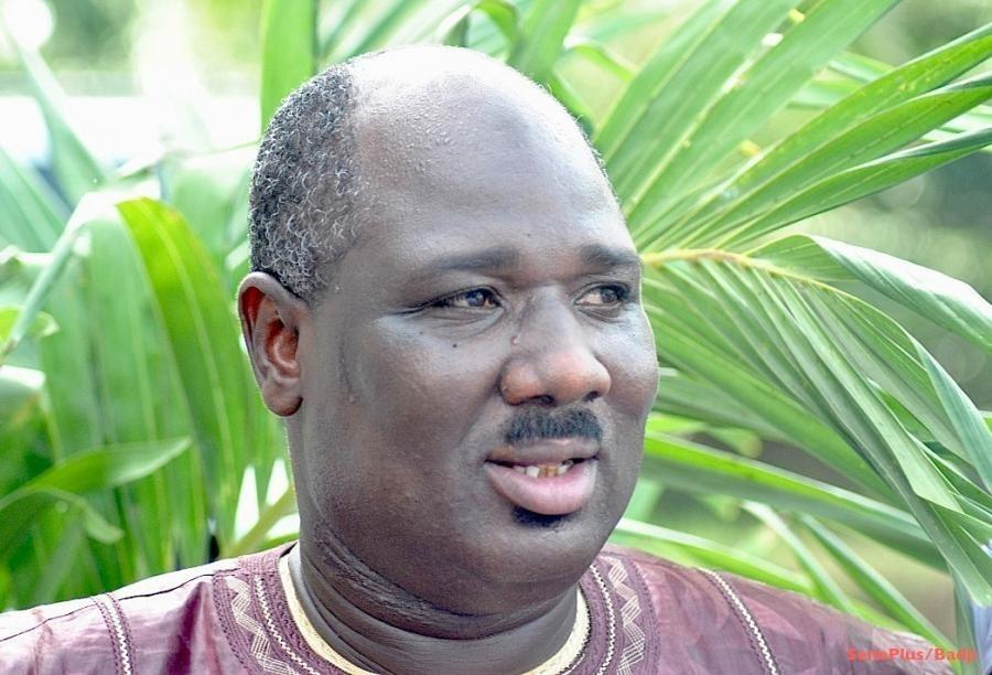 """Farba Ngom : """"Aliou Sall a une double légitimité politique et intellectuelle"""""""