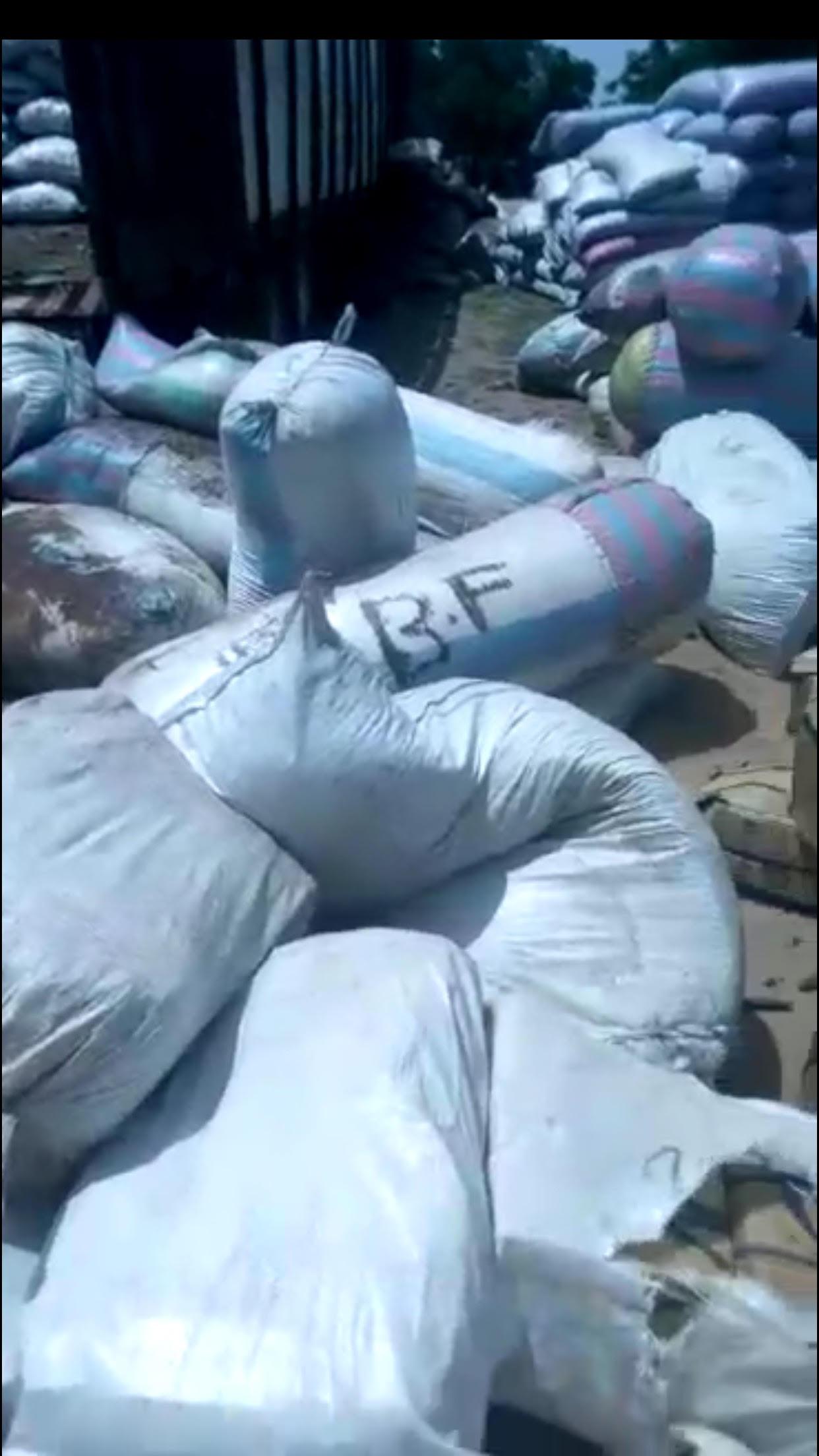 La Douane saisit 586 kg de chanvre indien à Gossas