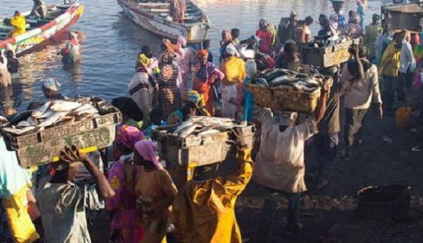 Difficiles négociations en vue pour des accords de pêche entre Dakar et Nouakchott