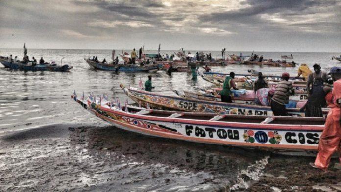 11 pirogues sénégalaises arraisonnées, les autorités exhortent les acteurs à respecter les textes et réglements en vigueur en Guinée-Bissau (Communiqué)