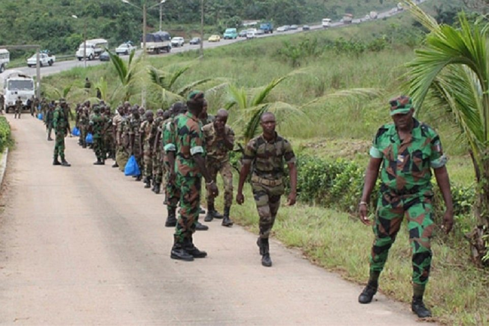 Arrestation de trois agents des Eaux et Forêts en Gambie : les deux pays jouent la carte de l'apaisement