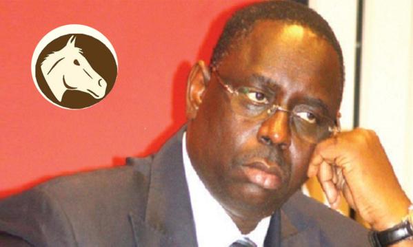 Transhumance: Bamba Fall accusé d'avoir reçu 40 millions