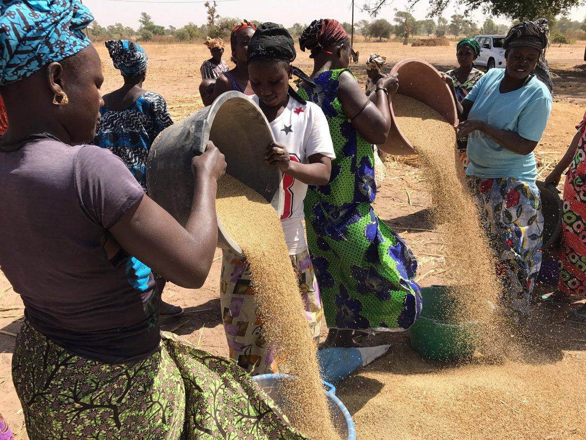 Pauvreté : Les villes de l'intérieur du Sénégal plus touchées