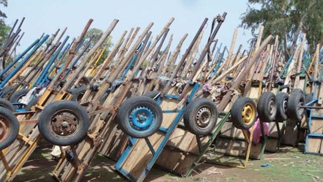 Lutte contre la coupe et le trafic de bois : 167 charrettes, plus de 100 chevaux, des milliers de tronc d'arbres… saisis
