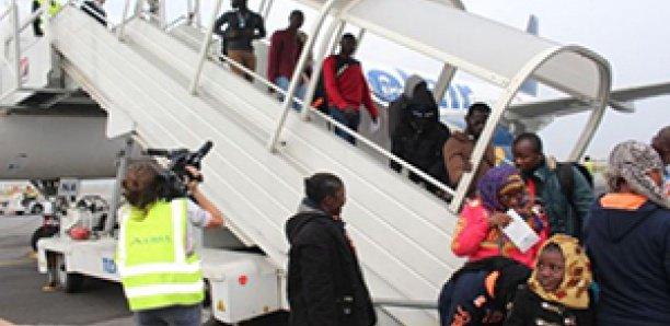 Migration : 180 Sénégalais sauvés de l'enfer libyen