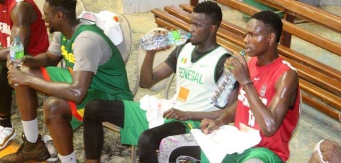 Abdourahmane Ndiaye, coach des Lions de basket : « Pape Moustapha Diop et Oumar Branco Badio sont audacieux et… »