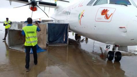 Les Avions de Air Sénégal Sa et Dhl endommagés : Airbus dépêche un expert à Dakar
