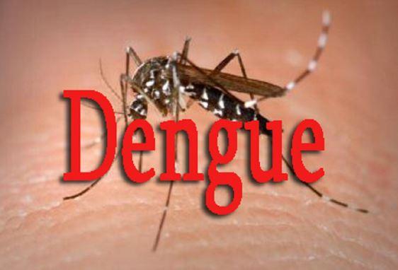 Dengue à Fatick : un 9é cas chez une dame de 55 ans
