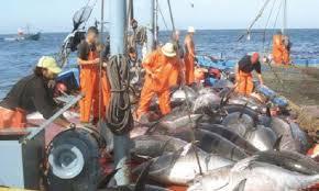 Pêche illégale et non réglementaire, flux migratoire, terrorisme maritime… : Ces menaces qui pèsent sur l'économie maritime