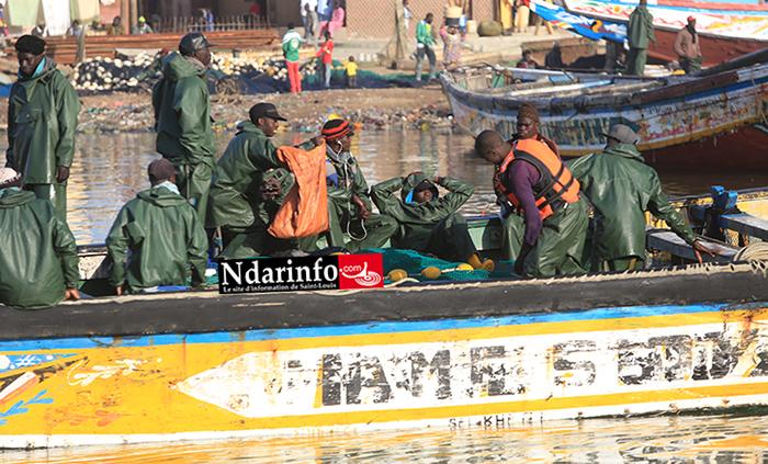 L'accord de pêche enfin finalisé : 400 licences aux Guet-Ndariens pour une capture de 50.000 tonnes de poissons