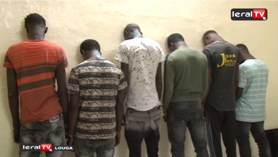 Louga : un gang de voleurs arrêté