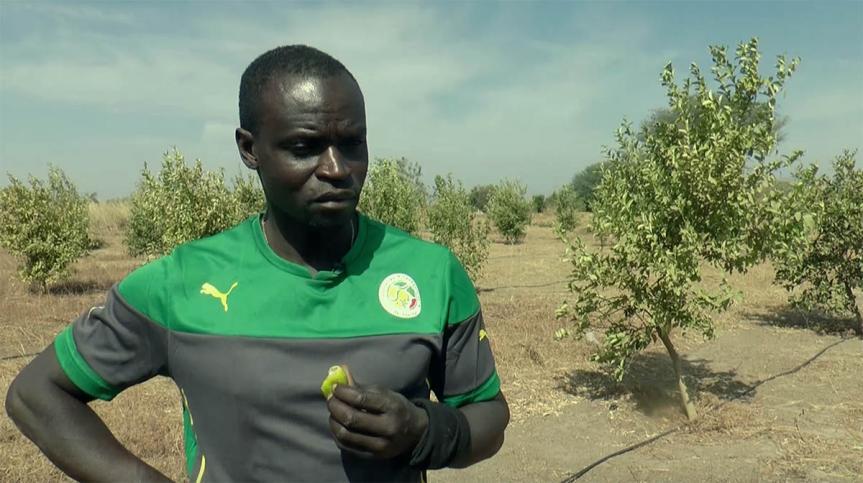 """Ferdinand Coly : """"Je vais renoncer à ma nationalité sénégalaise, je n'en peux plus"""""""