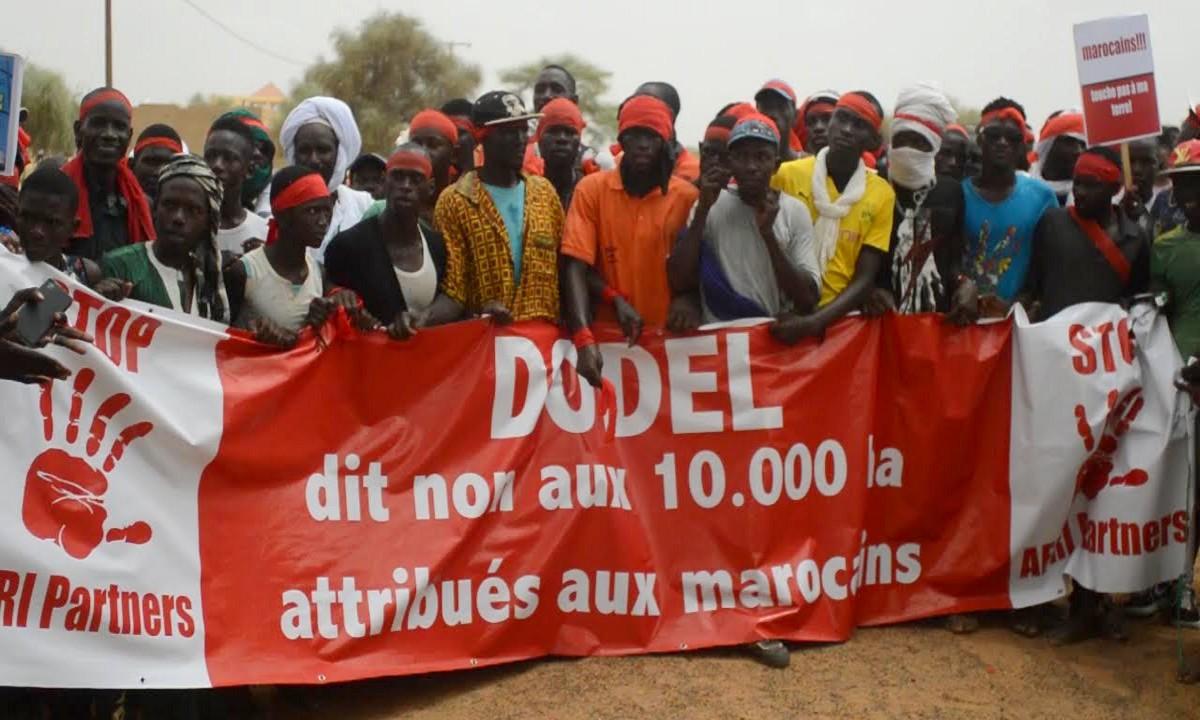 Dodel : La Cour Suprême annule l'affection d'un terrain de 10.000 hectares au groupe Afri Partners