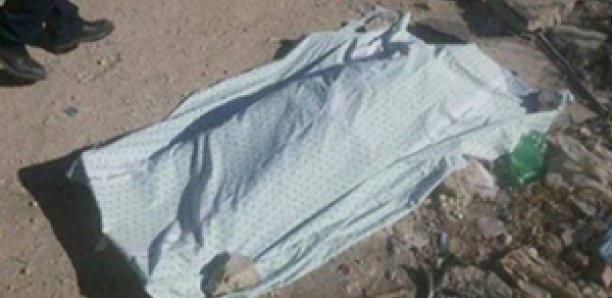 Kolda: des restes humains calcinés retrouvés dans la forêt