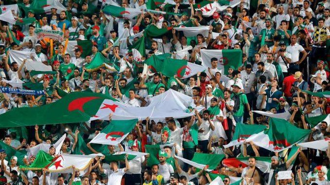 Finale CAN 2019 : 28 avions mobilisés pour transporter les supporters algériens au Caire