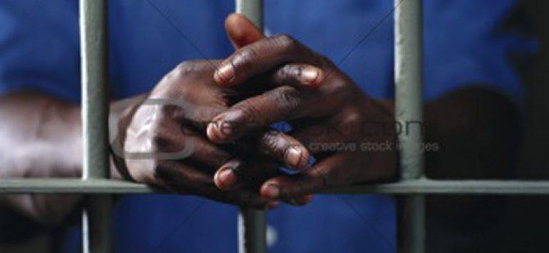 Pour avoir lacéré le visage de son collègue: Le chauffeur Thierno Diallo écope de 6 mois de prison
