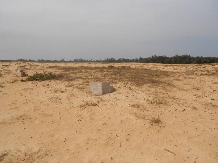 Litige foncier à Niaguis: le gouverneur de Ziguinchor s'implique